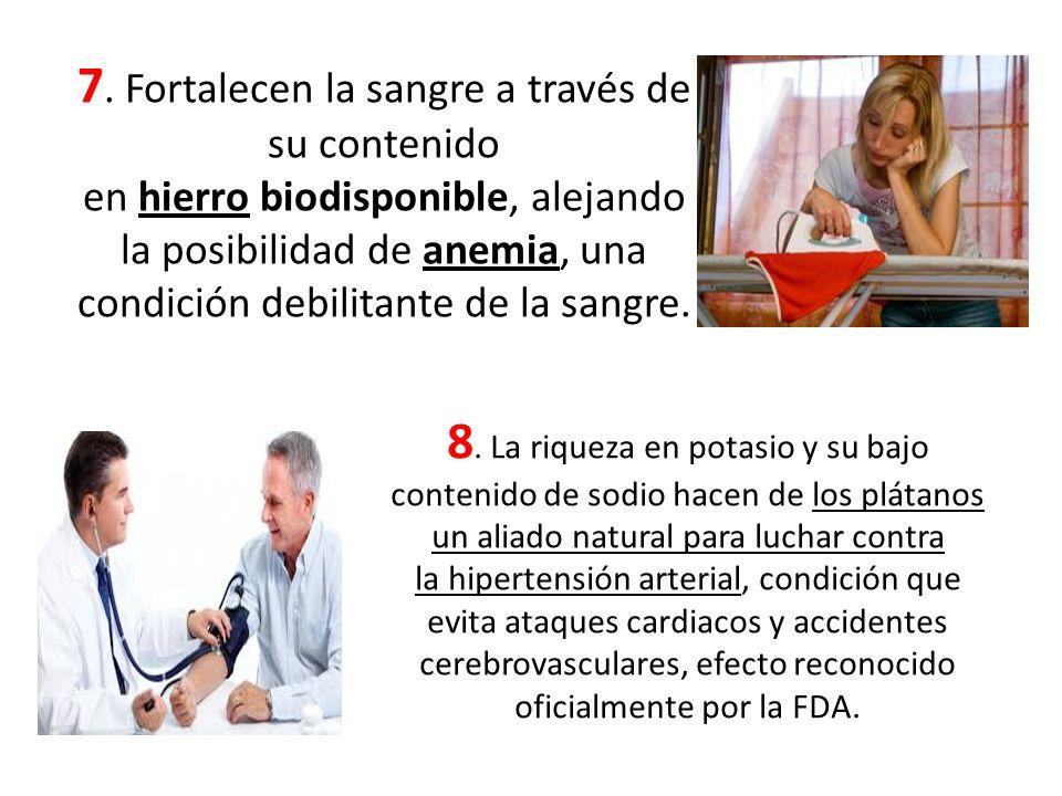 7. Fortalecen la sangre a través de su contenido en hierro biodisponible, alejando la posibilidad de anemia, una condición debilitante de la sangre. 8