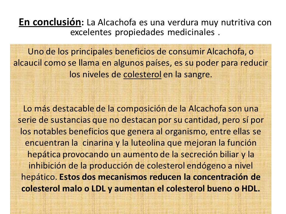 En conclusión : La Alcachofa es una verdura muy nutritiva con excelentes propiedades medicinales. Uno de los principales beneficios de consumir Alcach