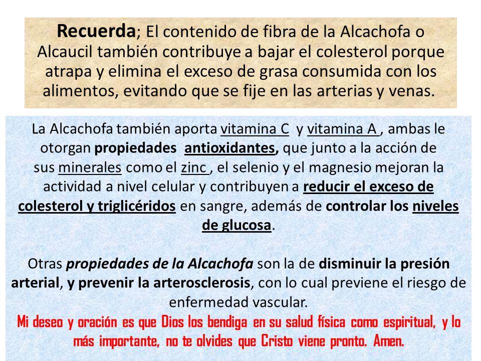 Recuerda ; El contenido de fibra de la Alcachofa o Alcaucil también contribuye a bajar el colesterol porque atrapa y elimina el exceso de grasa consumida con los alimentos, evitando que se fije en las arterias y venas.