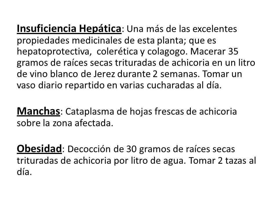 Insuficiencia Hepática : Una más de las excelentes propiedades medicinales de esta planta; que es hepatoprotectiva, colerética y colagogo. Macerar 35