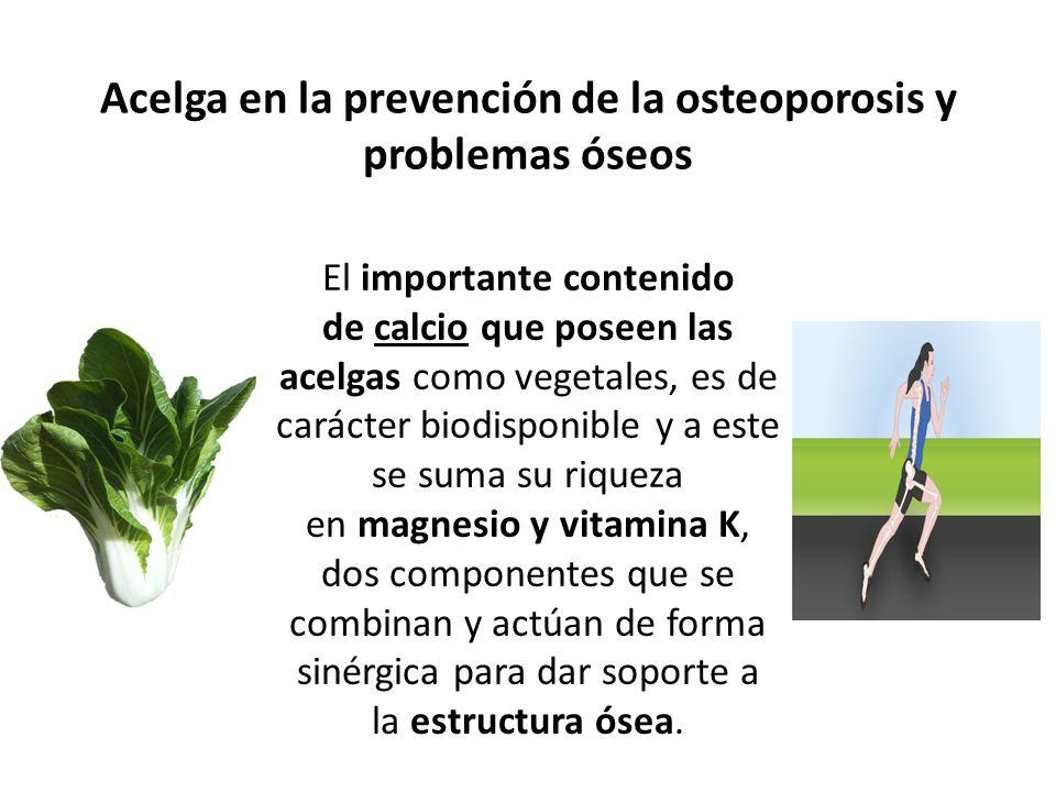 Acelga en la prevención de la osteoporosis y problemas óseos El importante contenido de calcio que poseen las acelgas como vegetales, es de carácter b