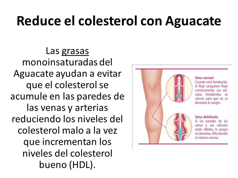 Las grasas monoinsaturadas del Aguacate ayudan a evitar que el colesterol se acumule en las paredes de las venas y arterias reduciendo los niveles del