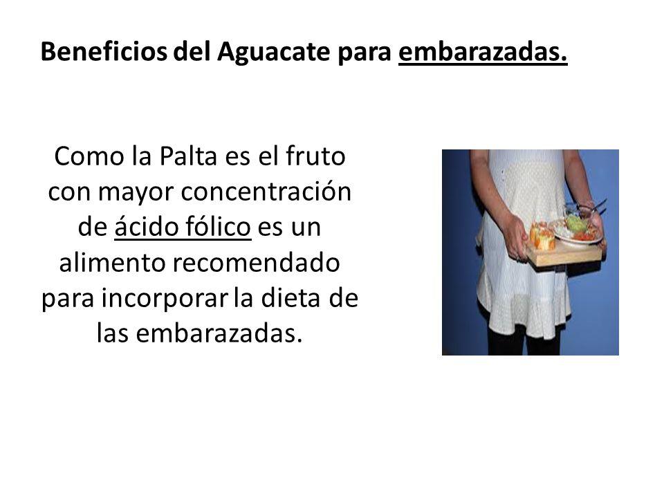 Beneficios del Aguacate para embarazadas. Como la Palta es el fruto con mayor concentración de ácido fólico es un alimento recomendado para incorporar