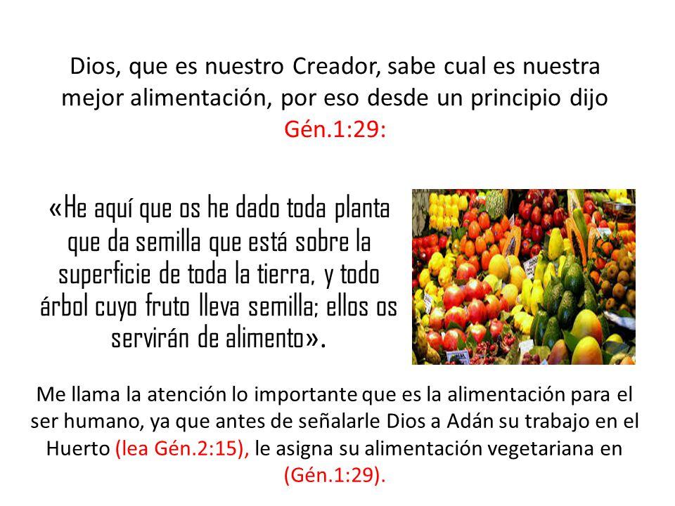 « He aquí que os he dado toda planta que da semilla que está sobre la superficie de toda la tierra, y todo árbol cuyo fruto lleva semilla; ellos os servirán de alimento ».