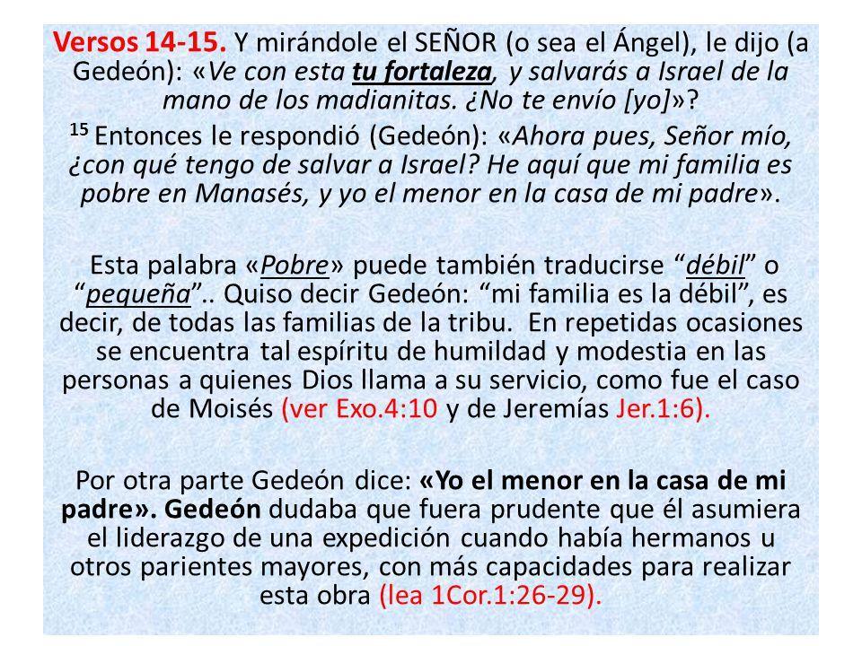 Versos 14-15. Y mirándole el SEÑOR (o sea el Ángel), le dijo (a Gedeón): «Ve con esta tu fortaleza, y salvarás a Israel de la mano de los madianitas.