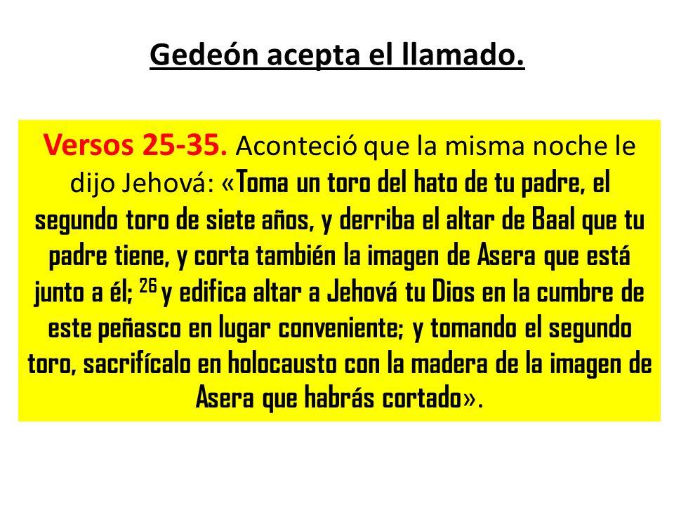 Gedeón acepta el llamado. Versos 25-35. Aconteció que la misma noche le dijo Jehová: « Toma un toro del hato de tu padre, el segundo toro de siete año