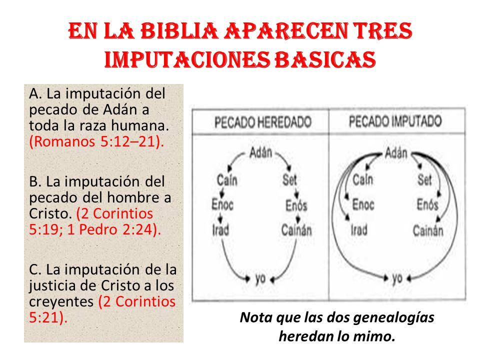 En la Biblia aparecen TRES IMPUTACIONES BASICAS A. La imputación del pecado de Adán a toda la raza humana. (Romanos 5:12–21). B. La imputación del pec