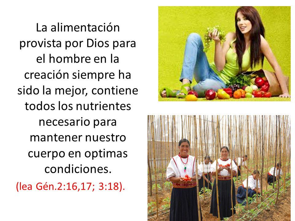 La alimentación provista por Dios para el hombre en la creación siempre ha sido la mejor, contiene todos los nutrientes necesario para mantener nuestr