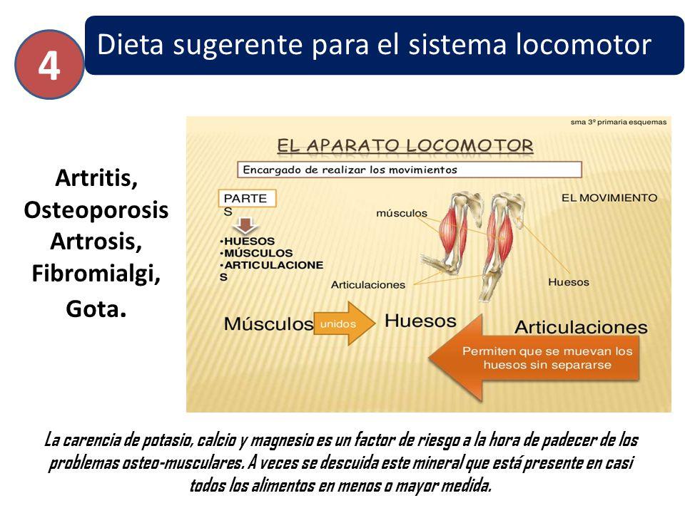 Dieta sugerente para el sistema locomotor Artritis, Osteoporosis Artrosis, Fibromialgi, Gota. 4 La carencia de potasio, calcio y magnesio es un factor