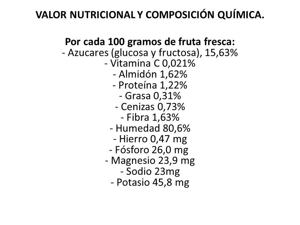 VALOR NUTRICIONAL Y COMPOSICIÓN QUÍMICA.