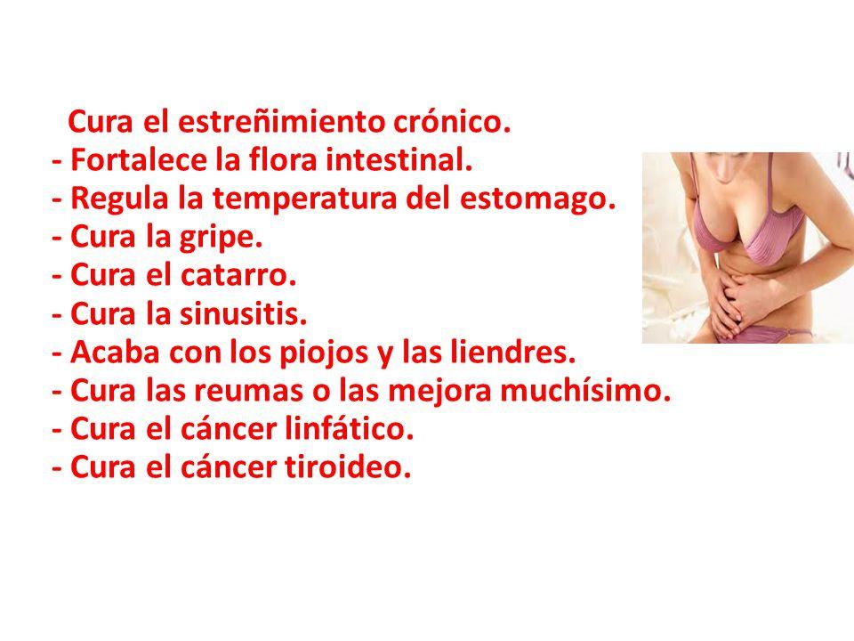 Cura el estreñimiento crónico.- Fortalece la flora intestinal.