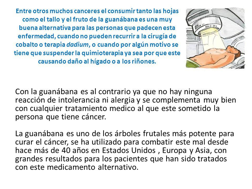 Con la guanábana es al contrario ya que no hay ninguna reacción de intolerancia ni alergia y se complementa muy bien con cualquier tratamiento medico al que este sometido la persona que tiene cáncer.