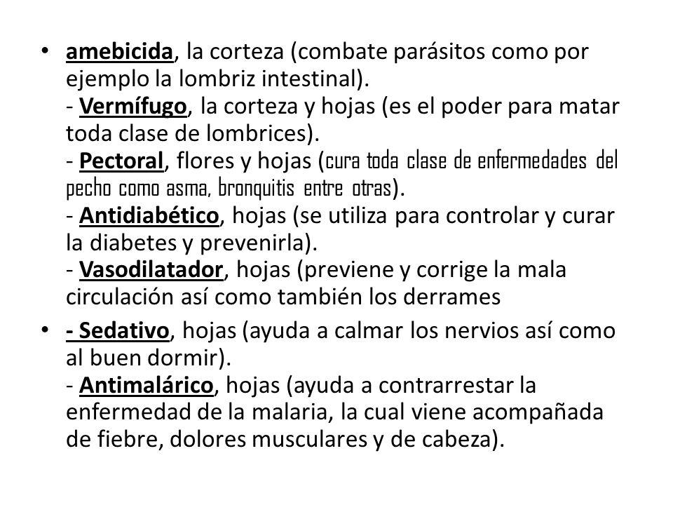 amebicida, la corteza (combate parásitos como por ejemplo la lombriz intestinal).