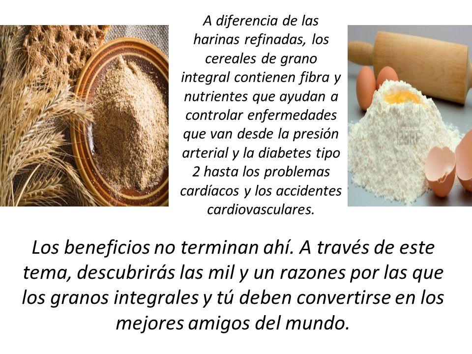 Los cereales integrales han formado parte importante de la dieta de distintas culturas desde la antigüedad.