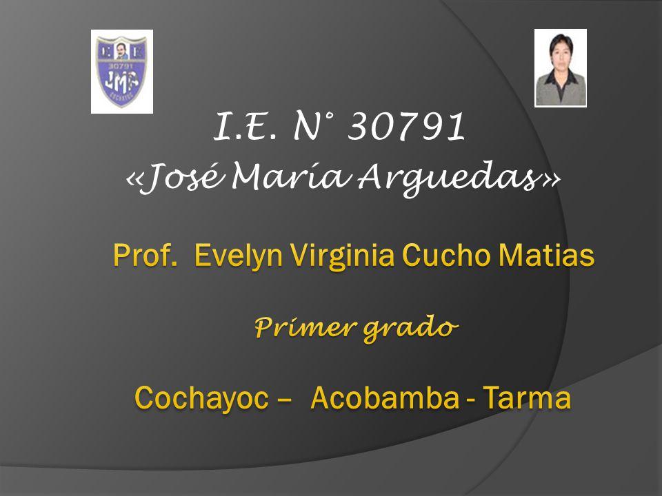 I.E. N° 30791 «José María Arguedas»