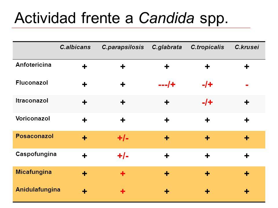 Actividad frente a Candida spp. C.albicansC.parapsilosisC.glabrataC.tropicalisC.krusei Anfotericina +++++ Fluconazol ++---/+-/+- Itraconazol +++-/++ V