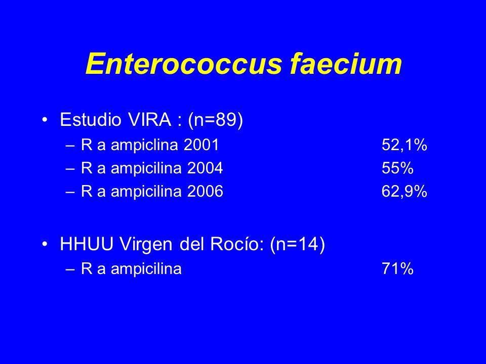 Enterococcus faecium Estudio VIRA : (n=89) –R a ampiclina 200152,1% –R a ampicilina 200455% –R a ampicilina 200662,9% HHUU Virgen del Rocío: (n=14) –R a ampicilina71%