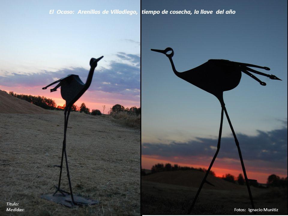 Titulo: Medidas: Fotos: Ignacio Munitiz El Ocaso: Arenillas de Villadiego, tiempo de cosecha, la llave del año