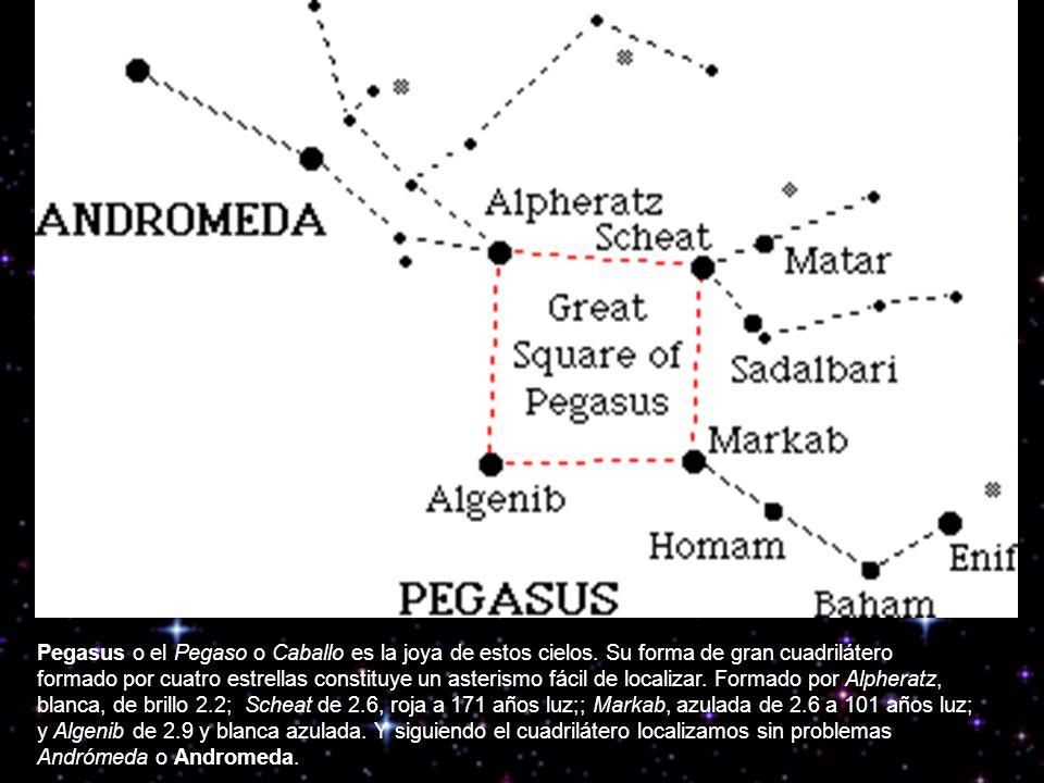 Pegasus o el Pegaso o Caballo es la joya de estos cielos. Su forma de gran cuadrilátero formado por cuatro estrellas constituye un asterismo fácil de