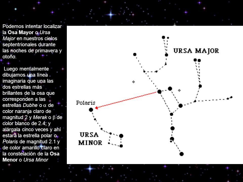 Podemos intentar localizar la Osa Mayor o Ursa Major en nuestros cielos septentrionales durante las noches de primavera y otoño. Luego mentalmente dib