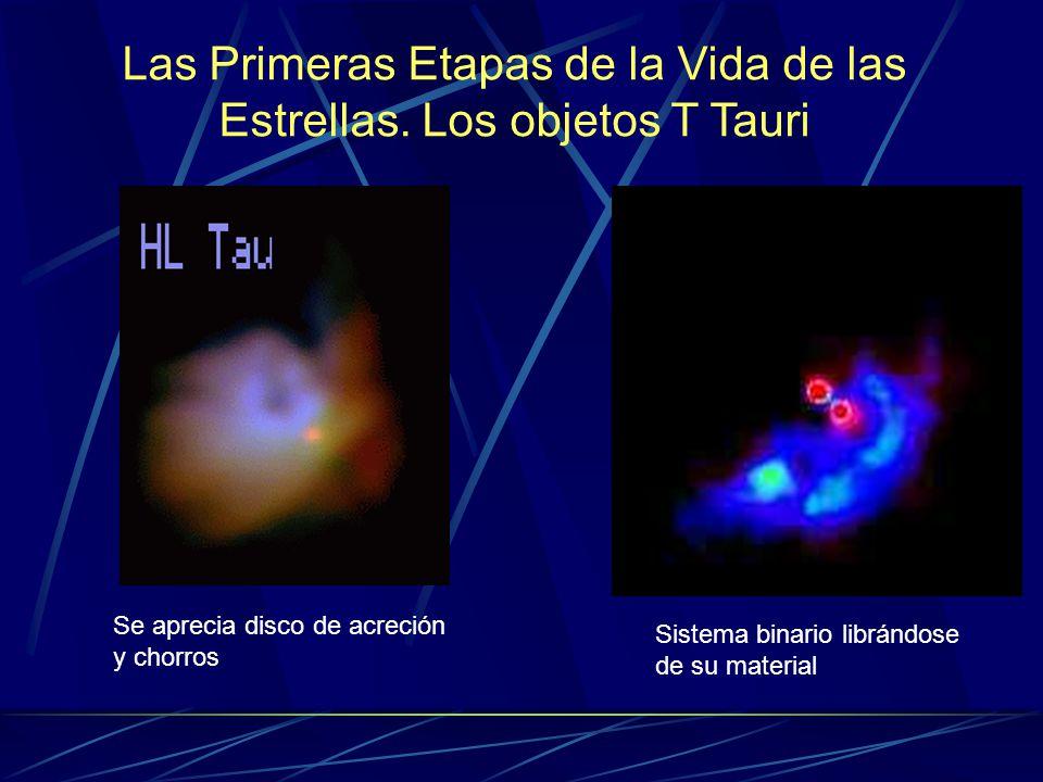 Las Primeras Etapas de la Vida de las Estrellas. Los objetos T Tauri Sistema binario librándose de su material Se aprecia disco de acreción y chorros