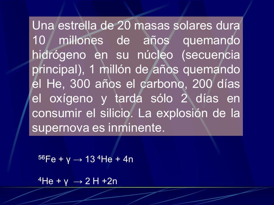 Una estrella de 20 masas solares dura 10 millones de años quemando hidrógeno en su núcleo (secuencia principal), 1 millón de años quemando el He, 300