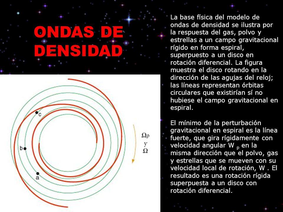 La base física del modelo de ondas de densidad se ilustra por la respuesta del gas, polvo y estrellas a un campo gravitacional rígido en forma espiral