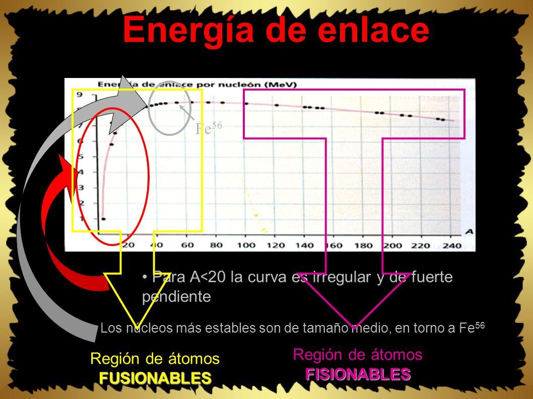 Energía de enlace Para A < 20 la curva es irregular y de fuerte pendiente Los núcleos más estables son de tamaño medio, en torno a Fe 56 Fe 56 Región de átomosFISIONABLES FUSIONABLES