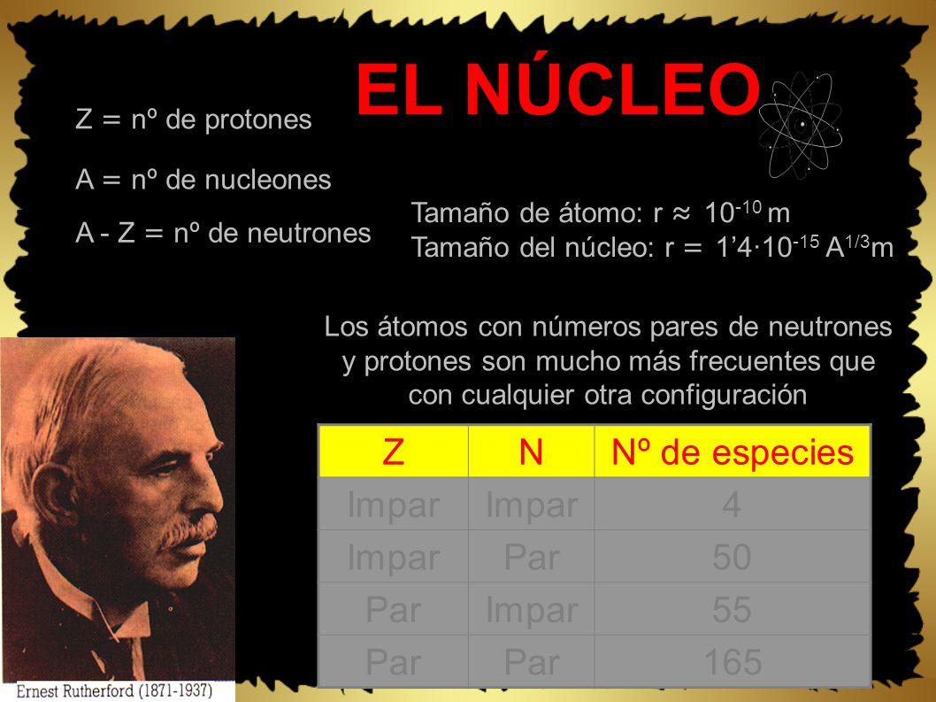 EL NÚCLEO Tamaño de átomo: r 10 -10 m Tamaño del núcleo: r = 14·10 -15 A 1/3 m Los átomos con números pares de neutrones y protones son mucho más frecuentes que con cualquier otra configuración ZNNº de especies Impar 4 Par50 ParImpar55 Par 165 Z = nº de protones A = nº de nucleones A - Z = nº de neutrones