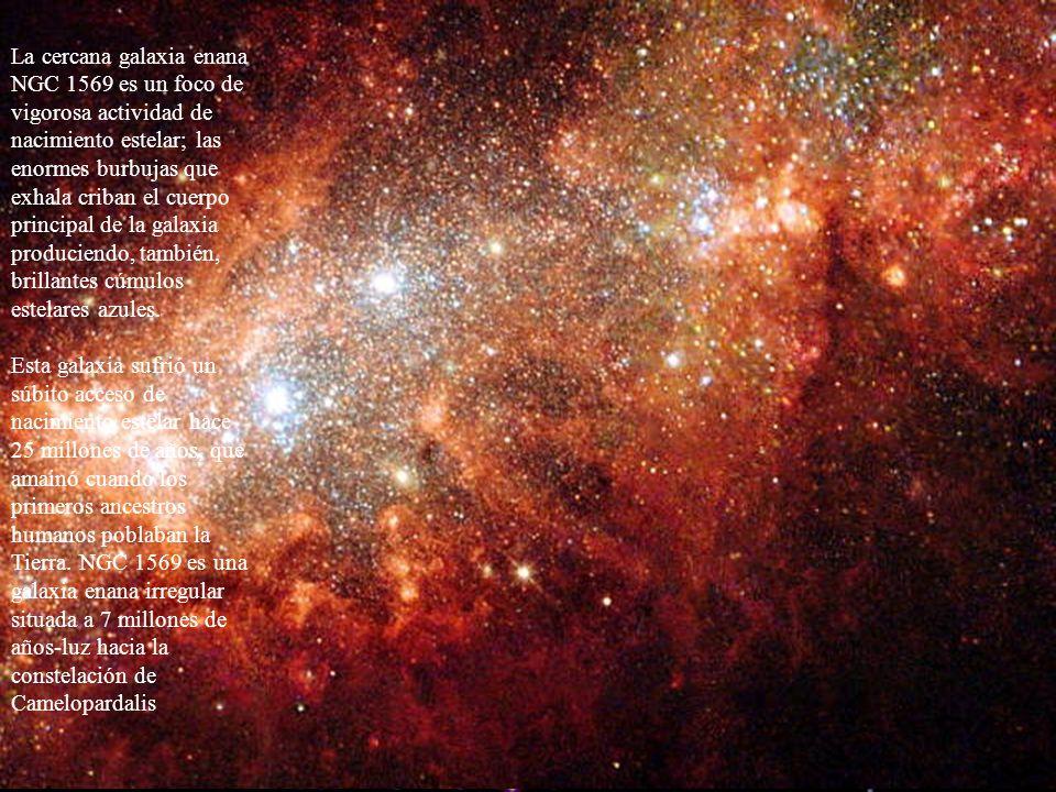 La cercana galaxia enana NGC 1569 es un foco de vigorosa actividad de nacimiento estelar; las enormes burbujas que exhala criban el cuerpo principal d