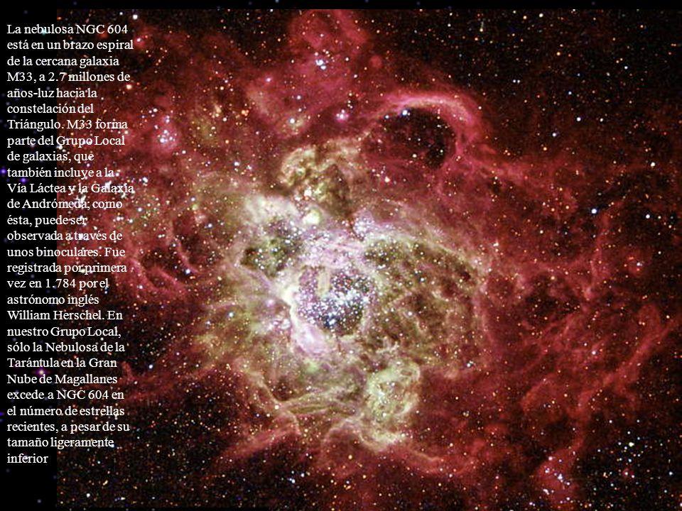 La nebulosa NGC 604 está en un brazo espiral de la cercana galaxia M33, a 2.7 millones de años-luz hacia la constelación del Triángulo. M33 forma part