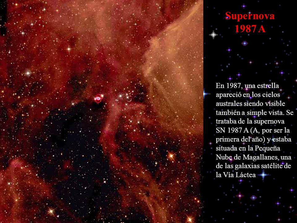 Supernova 1987 A En 1987, una estrella apareció en los cielos australes siendo visible también a simple vista. Se trataba de la supernova SN 1987 A (A