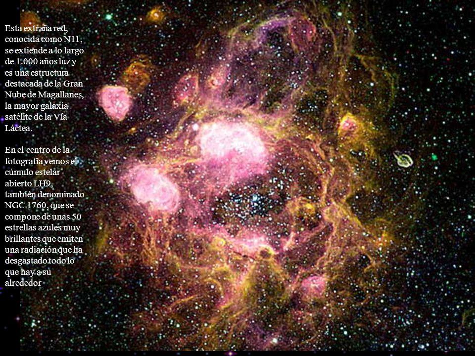 Esta extraña red, conocida como N11, se extiende a lo largo de 1.000 años luz y es una estructura destacada de la Gran Nube de Magallanes, la mayor ga