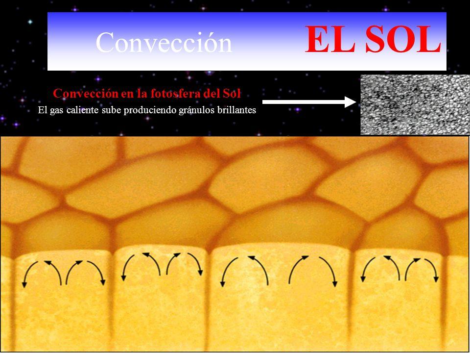 Convección en la fotosfera del Sol El gas caliente sube produciendo gránulos brillantes Convección EL SOL