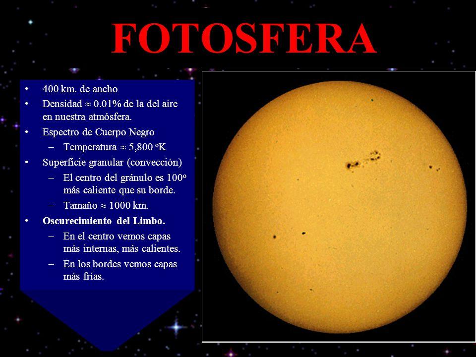 FOTOSFERA 400 km. de ancho Densidad 0.01% de la del aire en nuestra atmósfera. Espectro de Cuerpo Negro –Temperatura 5,800 o K Superficie granular (co