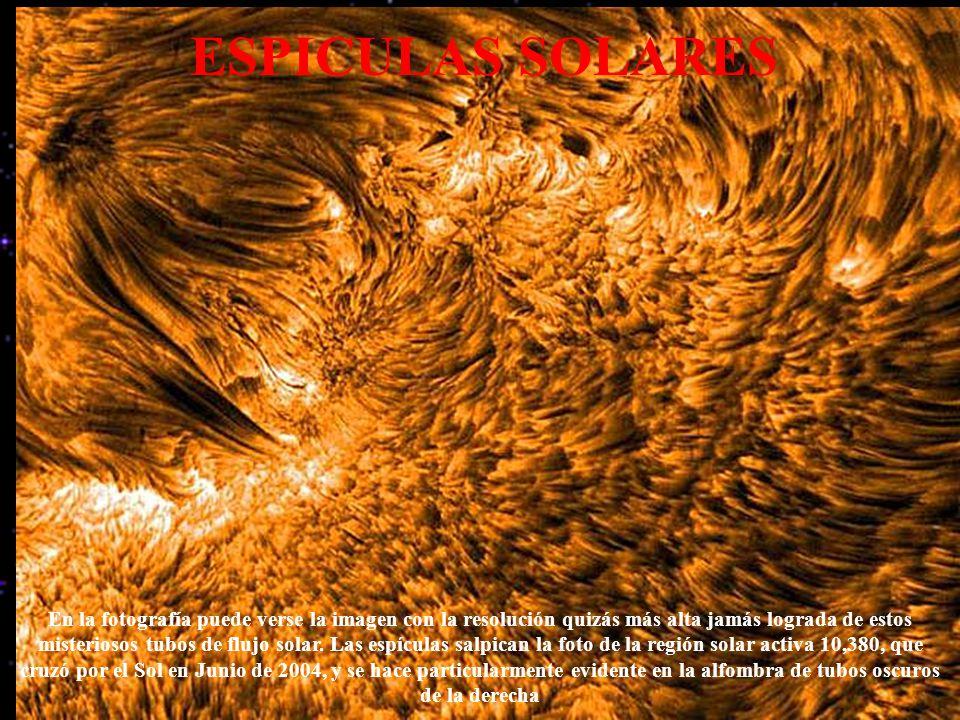 ESPICULAS SOLARES En la fotografía puede verse la imagen con la resolución quizás más alta jamás lograda de estos misteriosos tubos de flujo solar. La