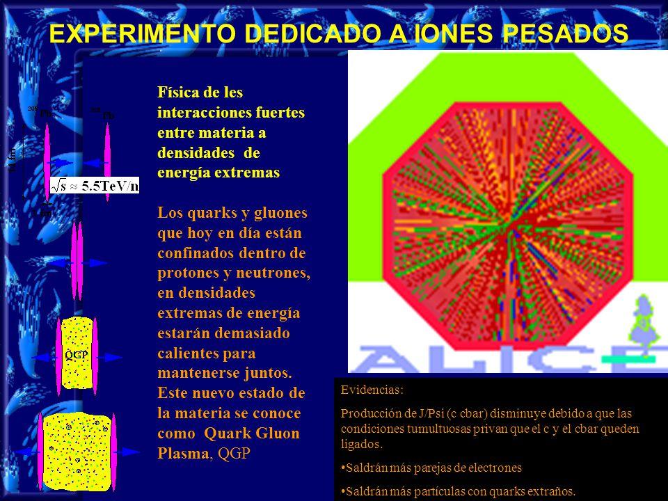 10 EXPERIMENTO DEDICADO A IONES PESADOS Física de les interacciones fuertes entre materia a densidades de energía extremas Los quarks y gluones que hoy en día están confinados dentro de protones y neutrones, en densidades extremas de energía estarán demasiado calientes para mantenerse juntos.