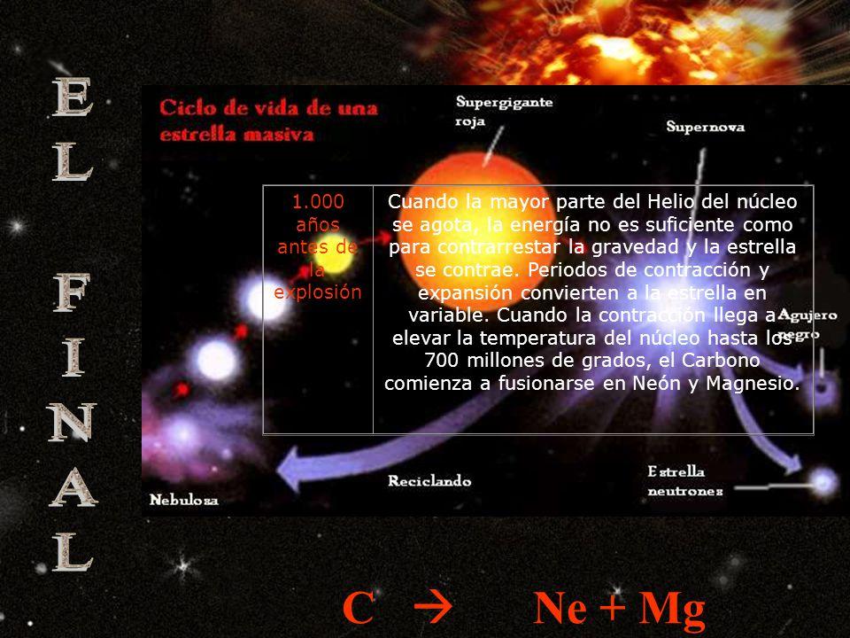 1.000.000 de años antes de la explosión El núcleo eleva su temperatura hasta los 170 millones de grados, comenzando una nueva reacción de fusión: el Helio se transforma en Carbono y Oxígeno He C + O