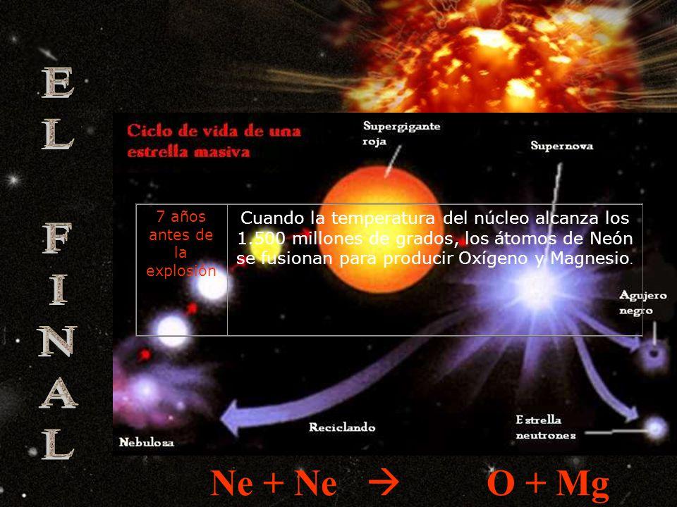 1.000 años antes de la explosión Cuando la mayor parte del Helio del núcleo se agota, la energía no es suficiente como para contrarrestar la gravedad y la estrella se contrae.