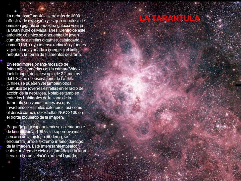 LA TARANTULA La nebulosa Tarantula tiene más de 1000 años luz de extensión y es una nebulosa de emisión gigante en nuestrra galaxia vecina la Gran nube de Magallanes.