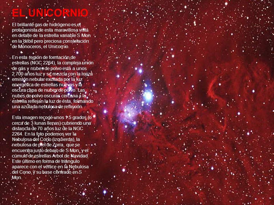 EL UNICORNIO El brillante gas de hidrógeno es el protagonista de esta maravillosa vista en detalle de la estrella variable S Mon en la débil pero preciosa constelación de Monoceros, el Unicornio.