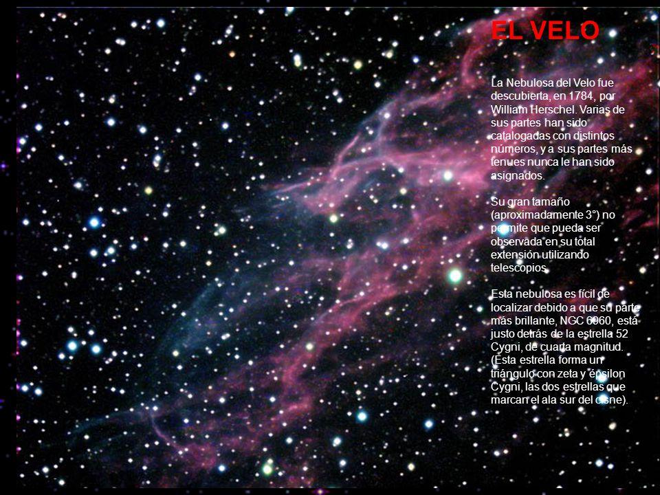 EL VELO La Nebulosa del Velo fue descubierta, en 1784, por William Herschel.