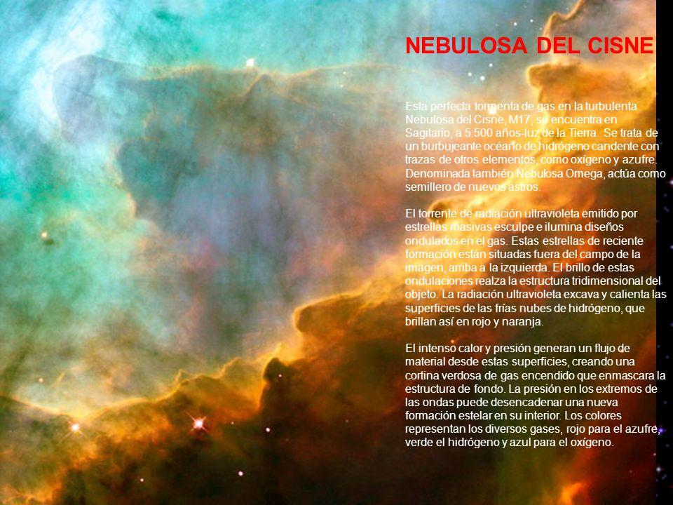 NEBULOSA DEL CISNE Esta perfecta tormenta de gas en la turbulenta Nebulosa del Cisne, M17, se encuentra en Sagitario, a 5.500 años-luz de la Tierra.