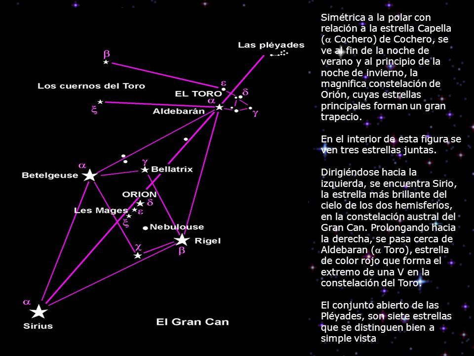 Simétrica a la polar con relación a la estrella Capella ( Cochero) de Cochero, se ve al fin de la noche de verano y al principio de la noche de invier