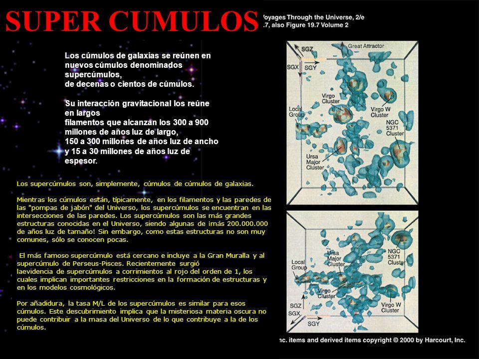 SUPER CUMULOS Los cúmulos de galaxias se reúnen en nuevos cúmulos denominados supercúmulos, de decenas o cientos de cúmulos. Su interacción gravitacio