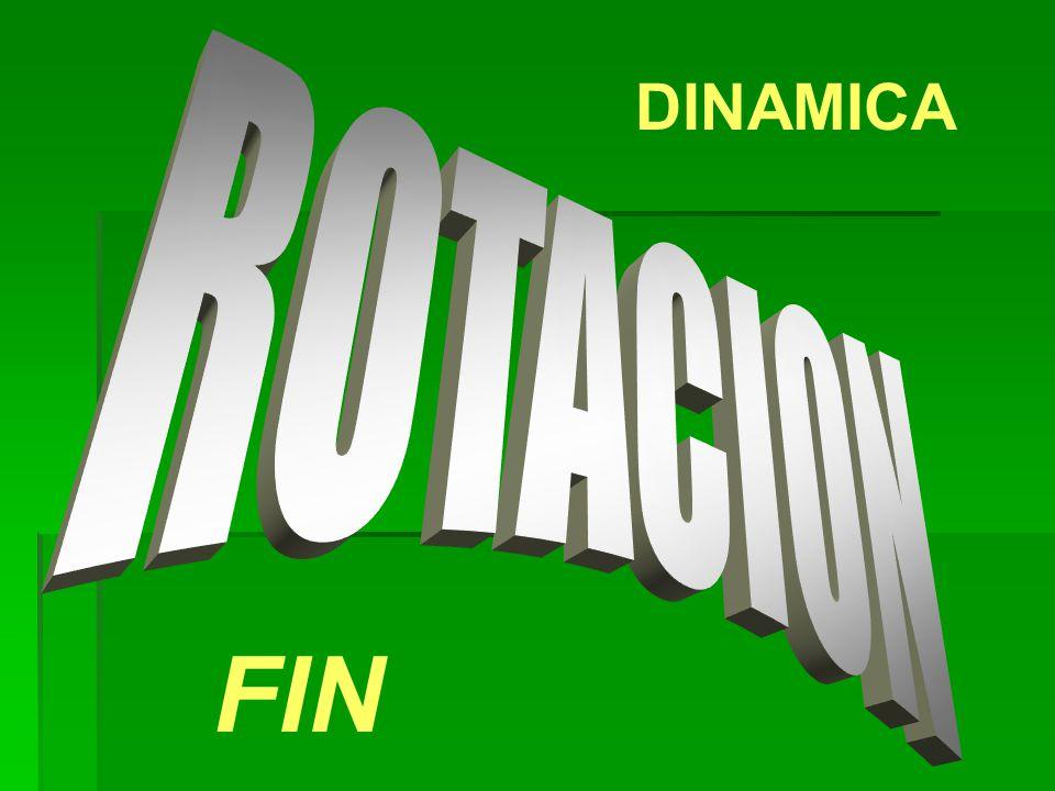 DINAMICA FIN