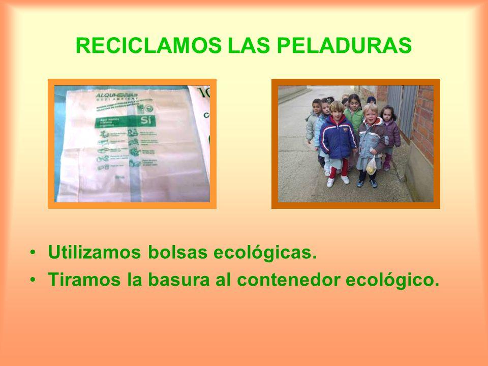 RECICLAMOS LAS PELADURAS Utilizamos bolsas ecológicas. Tiramos la basura al contenedor ecológico.