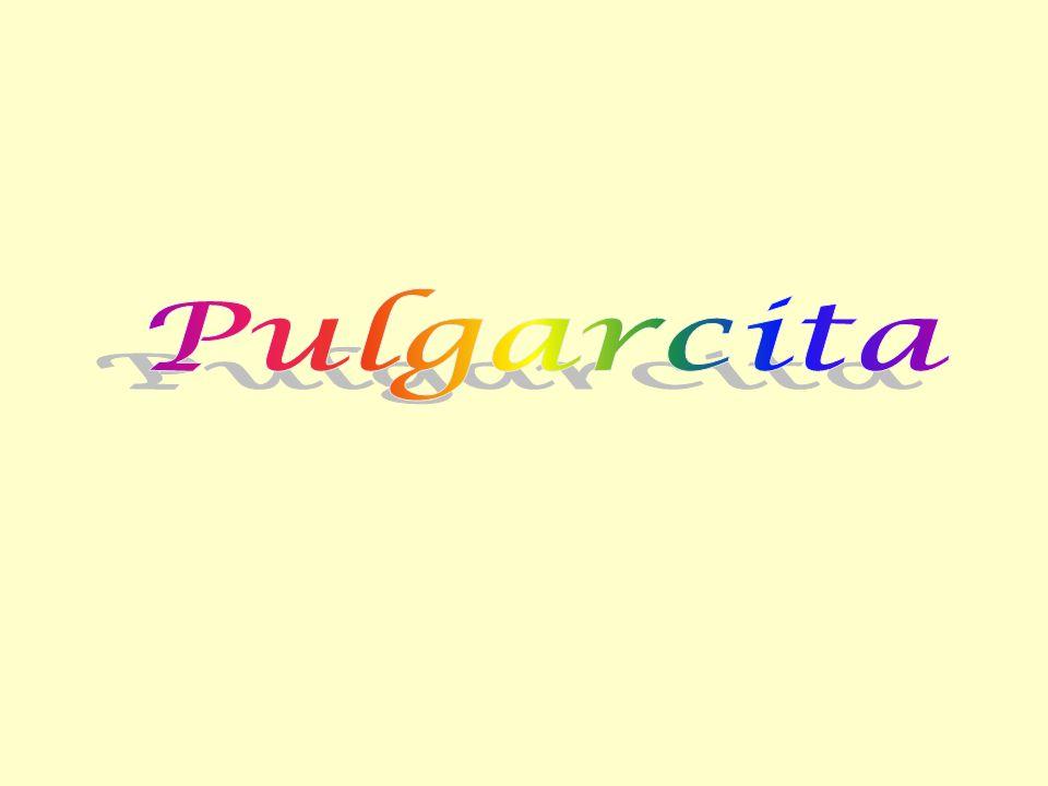 Pero al ver a Pulgarcita quedó encantado, y se dijo que era la más hermosa doncella que hubiera visto nunca.