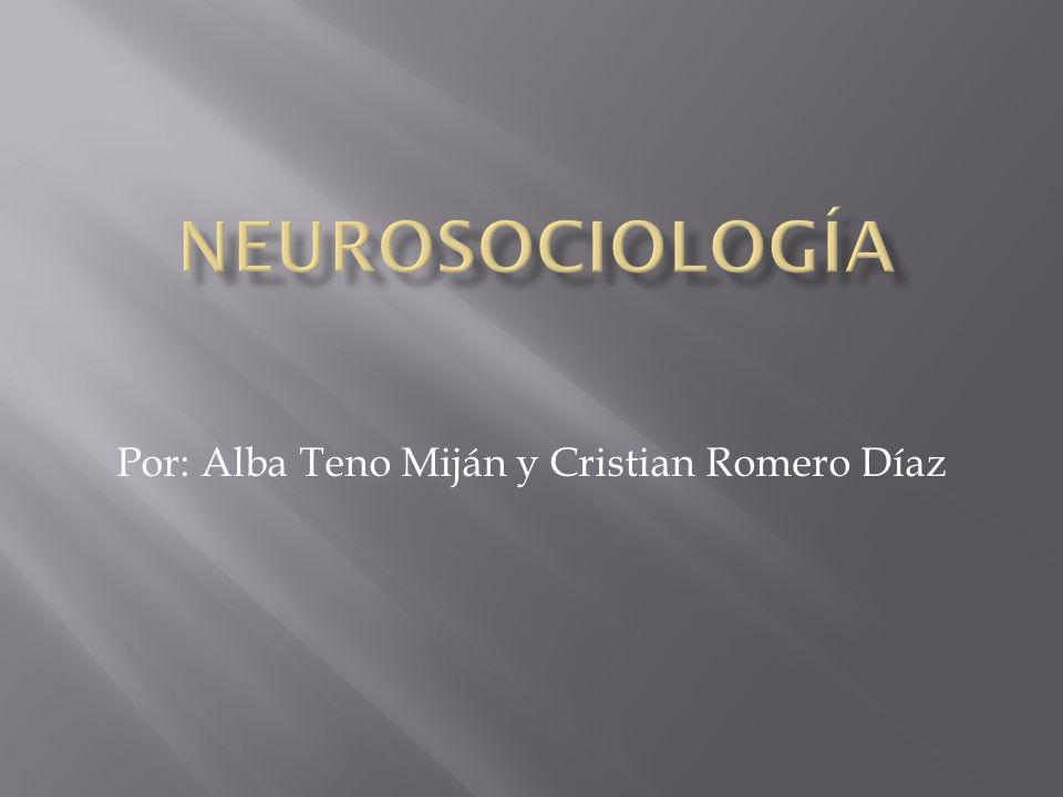 Por: Alba Teno Miján y Cristian Romero Díaz