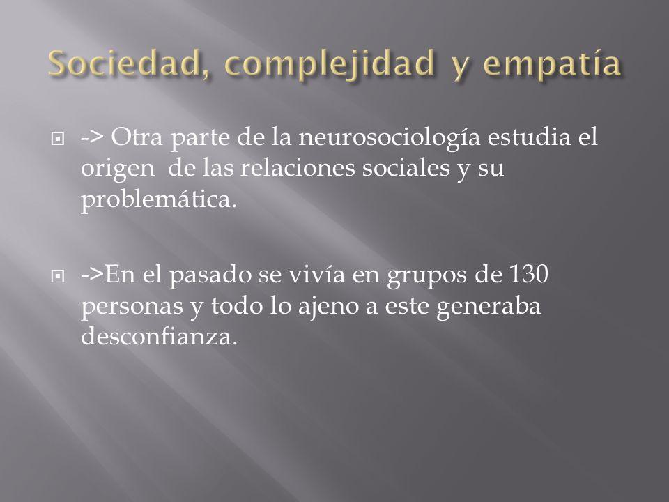 -> Otra parte de la neurosociología estudia el origen de las relaciones sociales y su problemática.